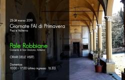 facebook Volterra 2