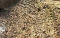 giornate-FAI-anfiteatro-romano-volterra-4