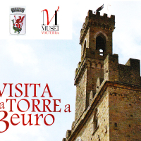 Visita la Torre